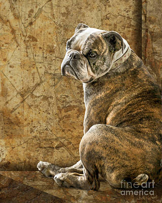 Bulldog Art Digital Art - Resting Place by Judy Wood