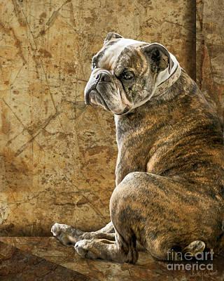 Bulldogs Digital Art - Resting Place by Judy Wood