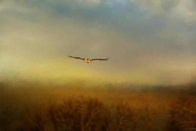 Hawk Photograph - Retreating Red Tail by Jai Johnson
