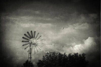 Surrealist Photograph - Return by Taylan Soyturk