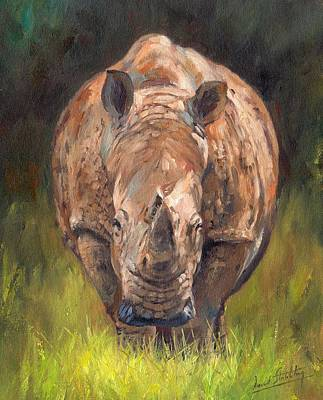 India Wildlife Painting - Rhino by David Stribbling