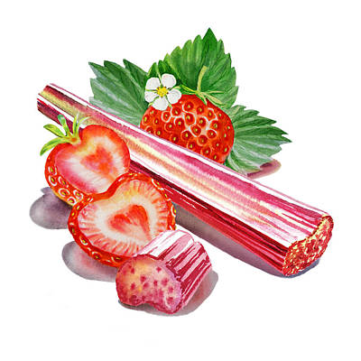 Juicy Strawberries Painting - Rhubarb Strawberry by Irina Sztukowski