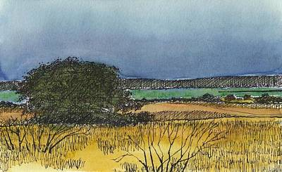 Concho Mixed Media - Rich Lake by Tim Oliver