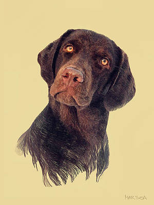 Chocolate Labrador Digital Art - Rich by Marina Likholat