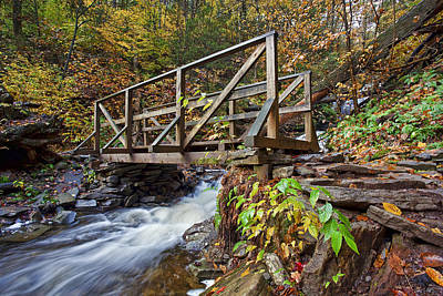 Creek Photograph - Ricketts Glen Bridge by Marcia Colelli