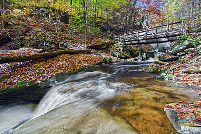 Autumn Photograph - Ricketts Glen Cascade  by Marcia Colelli