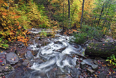 Autumn Photograph - Ricketts Glen Creek by Marcia Colelli