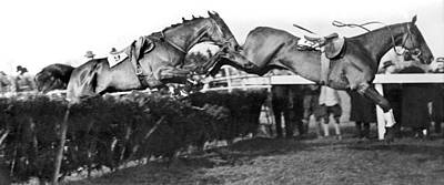 Steeplechase Race Photograph - Riderless Horses Take Jump by Underwood Archives