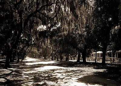Ridgewood Drawing - Ridgewood Ave, Daytona, Fla, Roads, Spanish Moss by Litz Collection