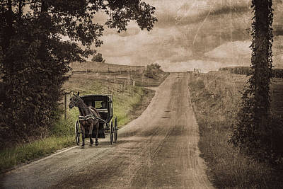 Horse And Cart Photograph - Riding Down A Country Road by Tom Mc Nemar