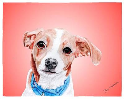 Animal Shelter Drawing - Riki A Former Shelter Sweetie by Dave Anderson