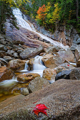Ripley Falls And Red Maple Leaf Print by Jeff Sinon
