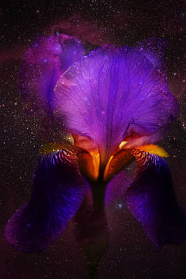 Risen From Stars. Cosmic Iris Print by Jenny Rainbow