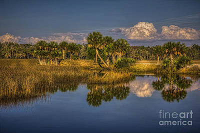 Rising Tide Print by Marvin Spates