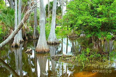 Alligator Bayou Photograph - River Bend Lake by Carey Chen