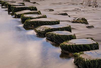 River Doe Stepping Stones. Print by Daniel Kay