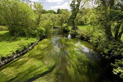 River Fergus Print by Bob Gibbons