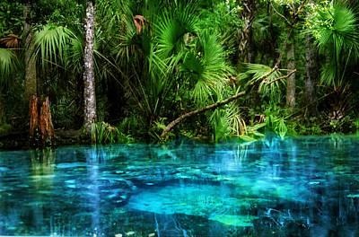 River Of Blue Chassahowitzka Nwr Print by Chris  Kusik