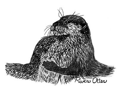 Otter Drawing - River Otter by Becky Mason