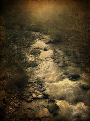 Tree Photograph - Riverside by Taylan Apukovska