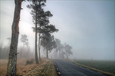 Autumn Photograph - Road In Mist by EXparte SE