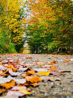 Appleton Photograph - Road To Appleton by Kevin Eckert Smith