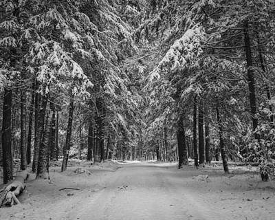 Snow Photograph - Road To Winter by Brian Young