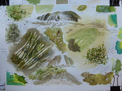 Roaring Fork Falls - Working Notes  Print by Joel Deutsch