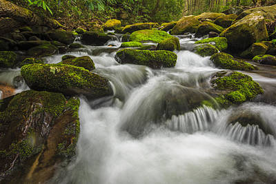 Whitewater Photograph - Roaring Forks by Mike Lang