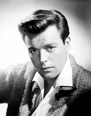 1950s Portraits Photograph - Robert Wagner, Ca. Mid-1950s by Everett