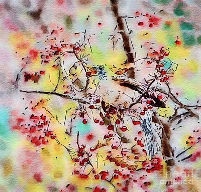 Digital Watercolor Photograph - Robin Berry Toss - Digital Watercolor by Kerri Farley