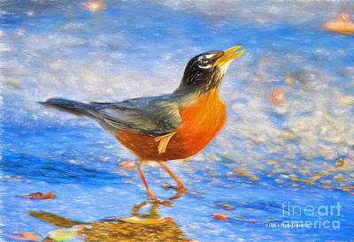 Robin Mixed Media - Robin In Florida by Deborah Benoit