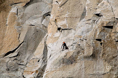 Rock Climber On El Capitan Print by Mark Newman