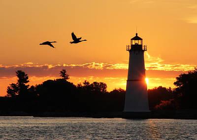 Waterfowl Digital Art - Rock Island Lighthouse Silhouettes by Lori Deiter