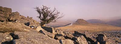 Rocks On A Hill, Dartmoor, Devon Print by Panoramic Images