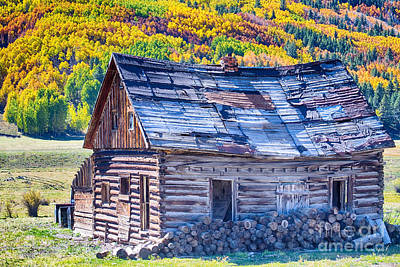 Winter Trees Photograph - Rocky Mountain Rural Rustic Cabin Autumn View by James BO  Insogna