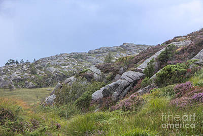 Nature Photograph - Rocky Norway by Amanda Mohler