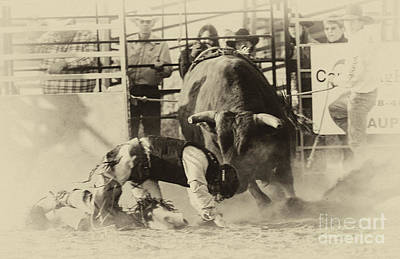 Rodeo Prepared To Be Punished Print by Bob Christopher