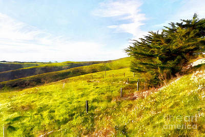 Rolling Landscape Hills Of Point Reyes National Seashore California Dsc2411wc Print by Wingsdomain Art and Photography