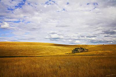 Kamloops Photograph - Rolling Prairie by Theresa Tahara