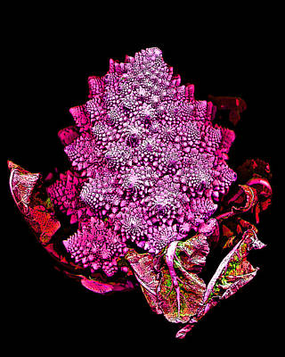 Broccoli Digital Art - Romanesque Broccoli by Jean Marie Economen
