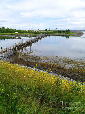 Jetty View Park Photograph - Roosevelt Campobello View by Christiane Schulze Art And Photography