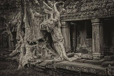 Roots In Ruins 7 Print by Hitendra SINKAR