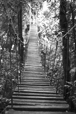 Rickety Bridge Photograph - Rope Bridge In Costa Rica's Cloud Forest by Christopher Kulfan