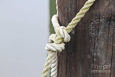 Boat Photograph - Rope On A Post by Cathy Lindsey