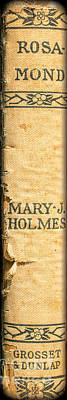 Library Photograph - Rosamond By Mary J. Holmes by Edward Fielding