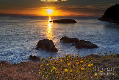 Puget Sound Photograph - Rosario Head Sunset by Mark Kiver