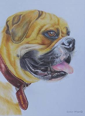 Roscoe The Boxer Original by Golanv  Waya