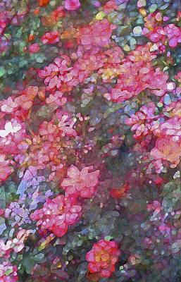 Rose 199 Print by Pamela Cooper