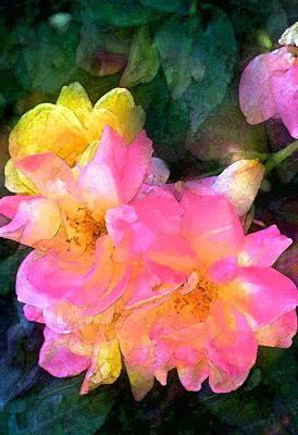 Rose 211 Print by Pamela Cooper